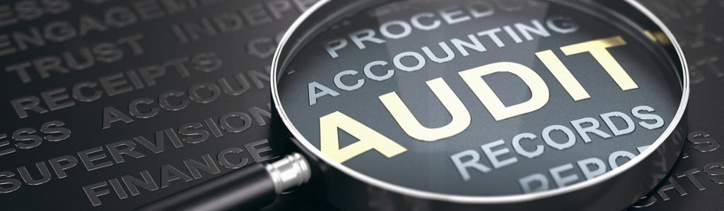 Audit records-1168185036-1