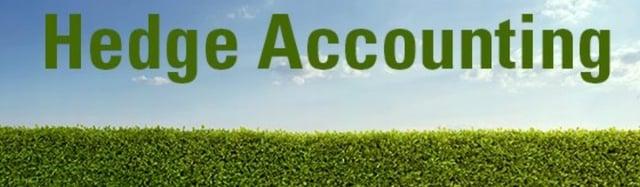 Hedge Accounting-466608-edited